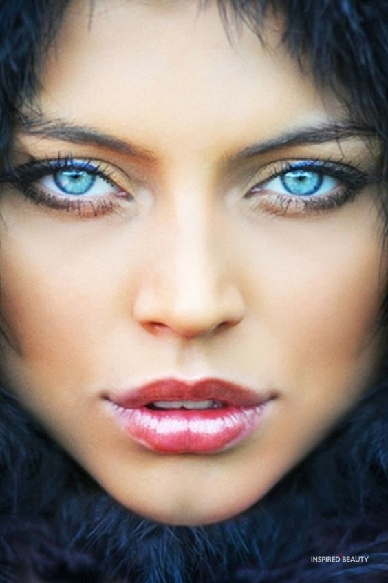 Some of the most Beautiful Eyes You will ever see